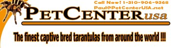 Dealer Pet Center Us