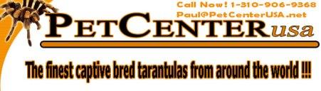 Dealer Pet Center Us