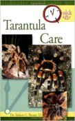Quick and Easy Tarantula care