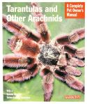 tarantulas-and-other-arachnids