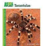 Tarantulas Michael Jacobi