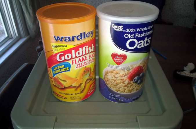 Goldfish flakes and whole oats combined and blended make great roach food.