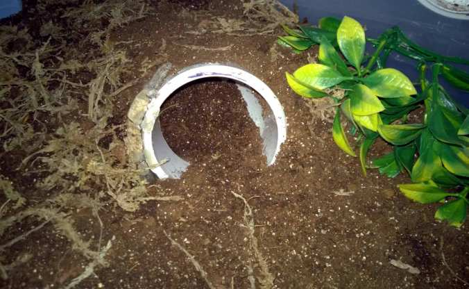 "3"" diameter white PVC elbow hide."