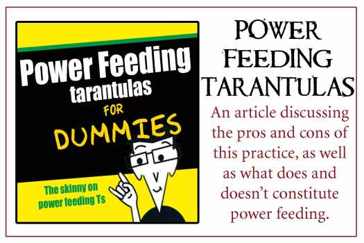 Power-Feeding-Slings