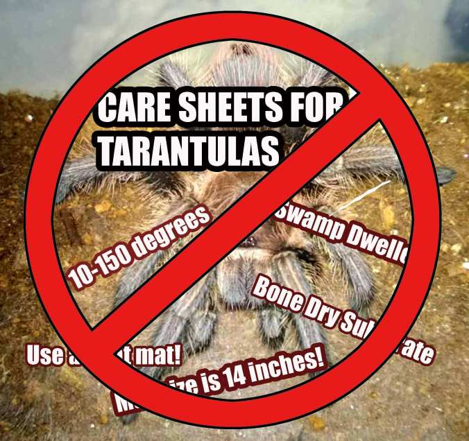 No-care-sheets