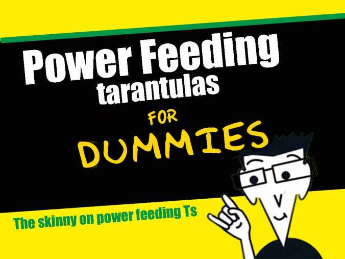 Powerfeeding-for-dummies
