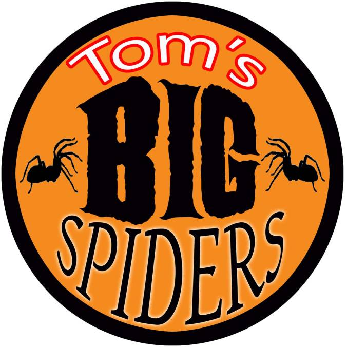 Tom's-big-spiders-avatar-lo