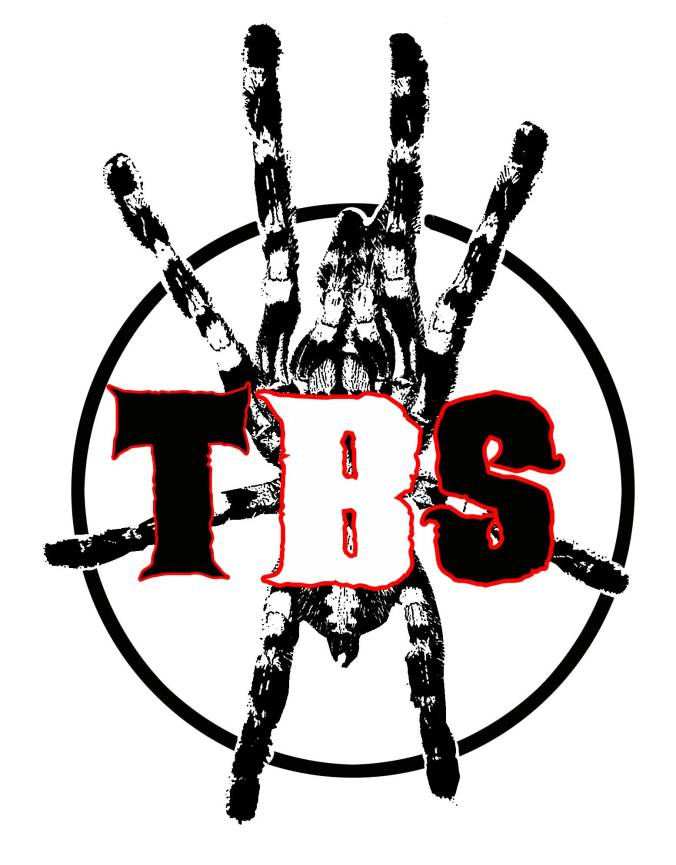 Tom's-Big-Spiders-Logo-2